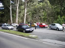 Day Tour Dandenong Ranges